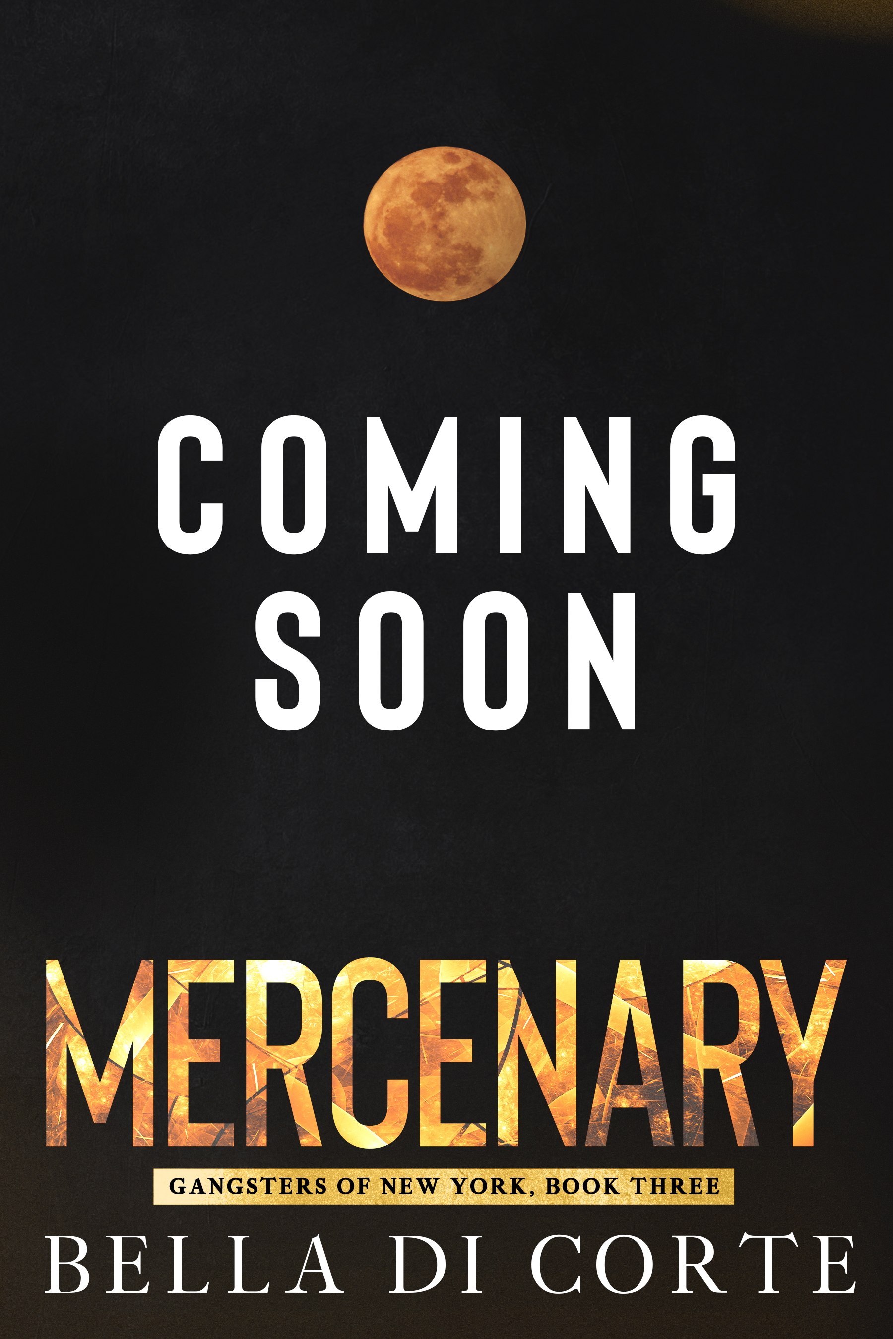 Mercenary_Placeholder